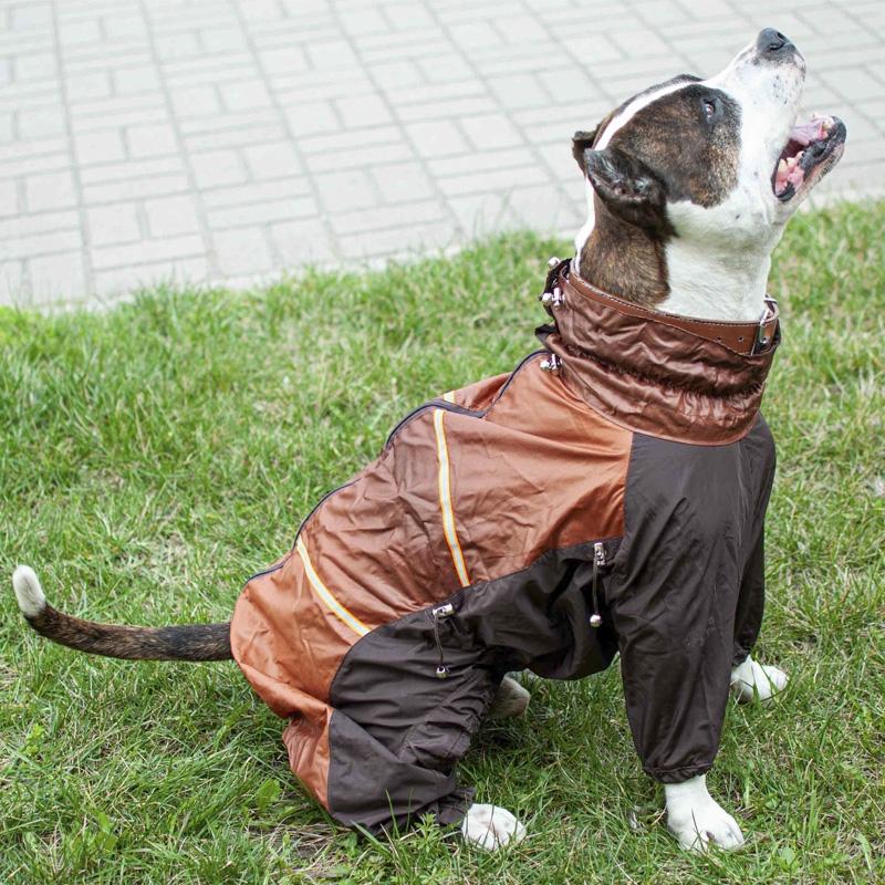 Комбинезон для собак Корона на велюре (девочка) 0