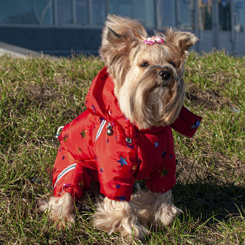 Комбинезон для собак Серпантин с сумкой без подкладки (девочка) 0